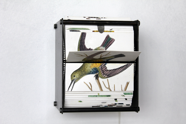 The Automated Flip Books Of Juan Fontanive Offer The Book As A Closed Loop, A Mechanism Of Endless Repetition That Only Changes With The Disposition Of The Viewer.