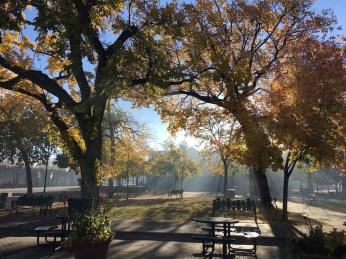 Morning light in the Santa Fe Plaza.