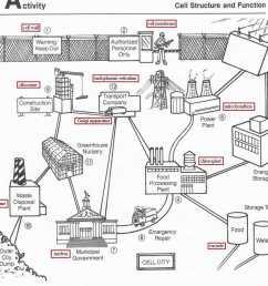 cell city analogy [ 943 x 901 Pixel ]