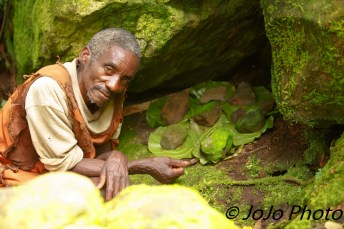 Batwa Pygmy Elder shows shrine to their God in Bwindi National Park