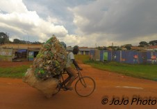 Man Transporting Recycling