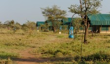 Tents at Chaka Camp in Serengeti National Park