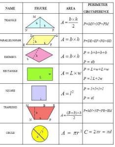 Volume surface area  mrs johnson th grade math wms also chart keninamas rh