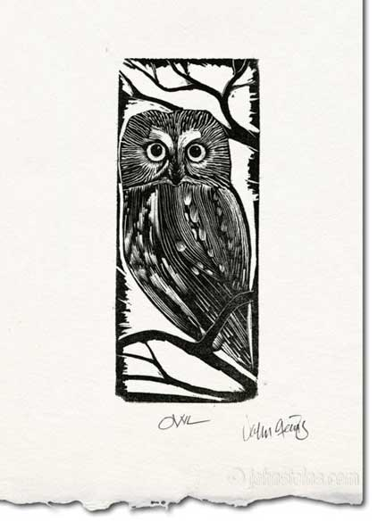 Wood Engraving Print ~ Owl