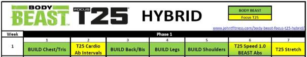 Download the Body Beast - Focus T25 Hybrid