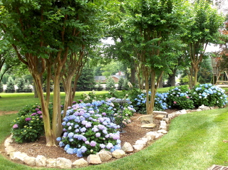 landscaping ideas with crepe myrtles
