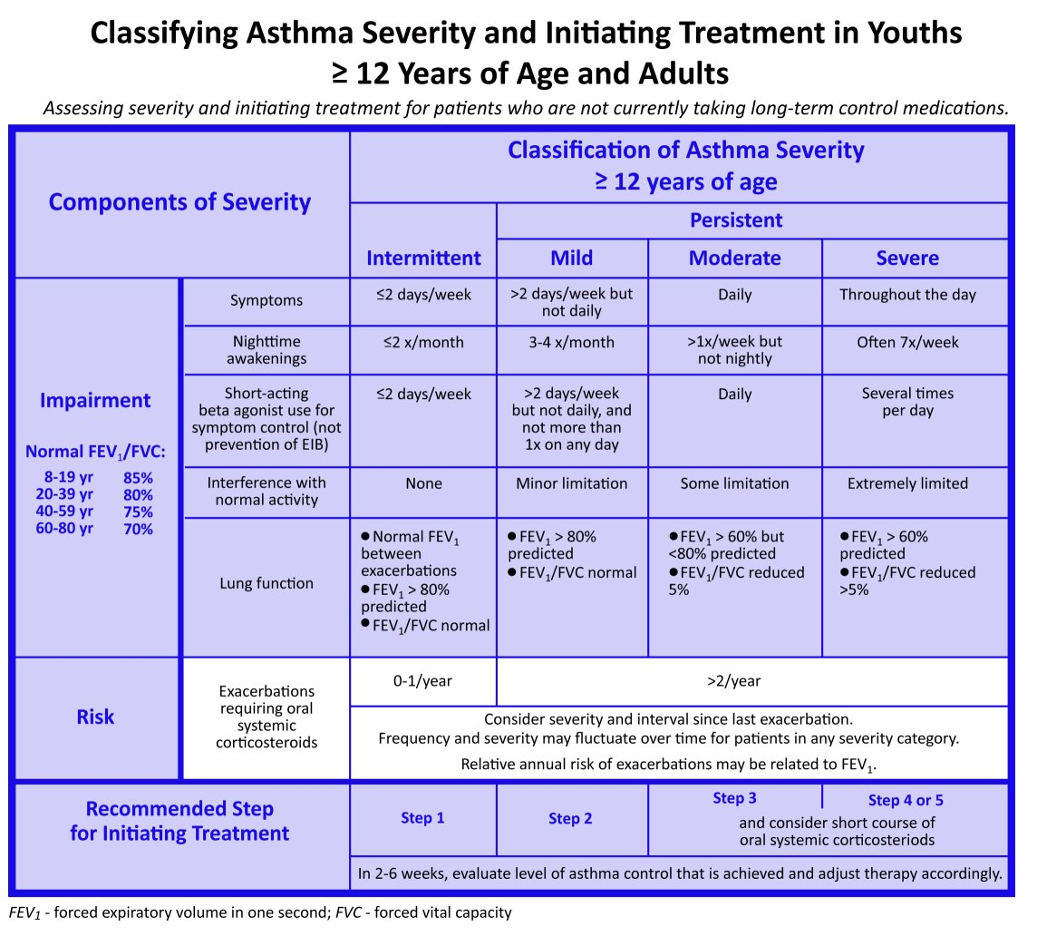 Asthma Severity Classification - Asthma Lung Disease