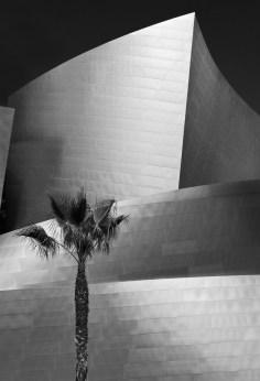 AR 00588 California LA Disney Hall Alt