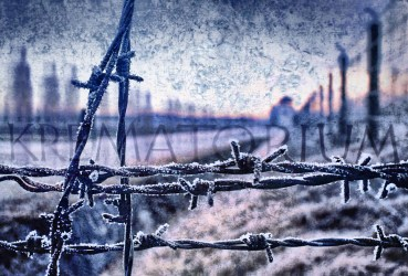 GI 00786 Germany Dachau Camp
