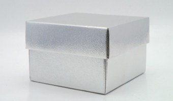 Your Whole Life In a Silver Box