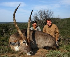 """As to lighten up the mood we found a pretty amazing Waterbuck well over the 30"""" mark, and at somewhere close to 600 yards Aaron dropped him in his tracks. Reiterating my belief and trust in Aaron as a shooter."""