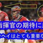大谷翔平、5勝目かけ先発 指揮官は信頼「ショウヘイはとても重要な存在」  ■ は指揮官の期待に応え  #  Shohei Ohtani #スポーツニュース #followme