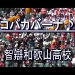 【コパカバーナ】智辯和歌山高校・応援歌♪【高校野球・秋季近畿大会】 #スポーツニュース #followme
