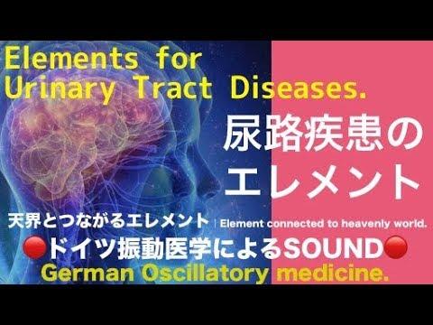 🔴ドイツ振動医学による尿路疾患編|Urinary Tract Diseases by German Oscillatory Medicine. #トラベル #旅行 #followme