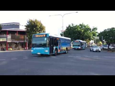 【オーストラリア】 ケアンズの路線バス Buses of Cairns Australia (2017.3) #トラベル #旅行 #followme