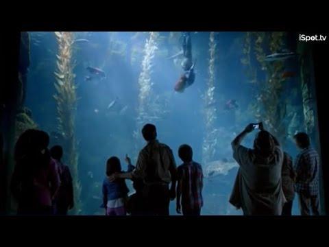 ディズニー ランド パーク 海外のCM 8つ 人魚の正体は? バルーンも乗れるんですね #ディズニー #Disney #followme