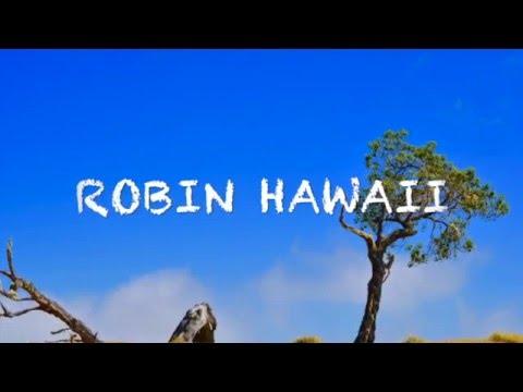 Mauna Kea road マウナケアロード by Robin(呂敏) #トレンド #followme