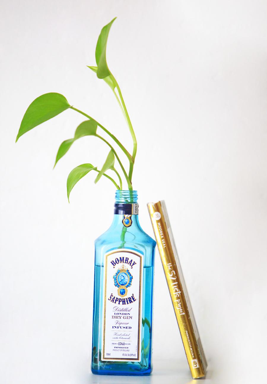 ginpothos