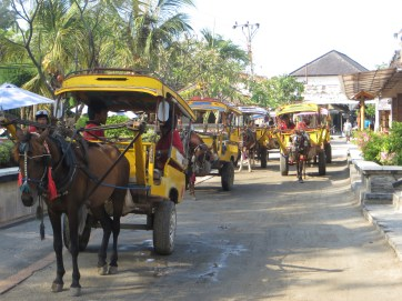 Horse-cart taxis
