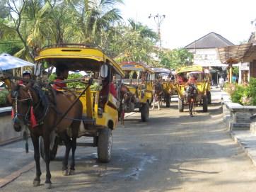 Horse-cart taxis