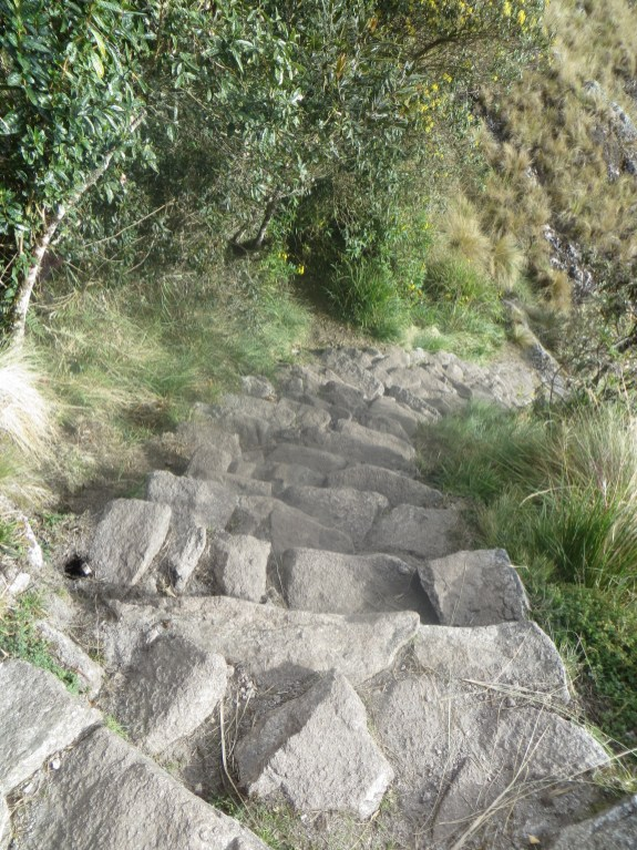 Steep steps down
