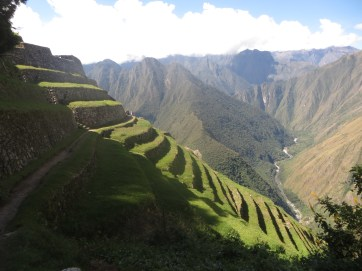 Inca Terraces