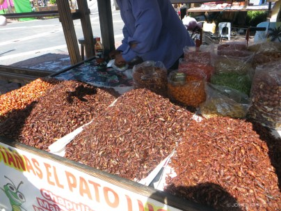 Chapulines aka Grasshoppers!