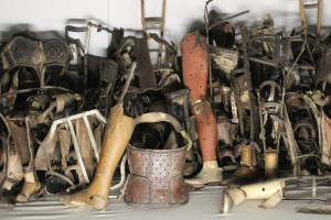 Auschwitz limbs