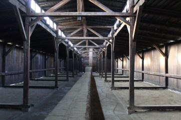 Inside auschwitz