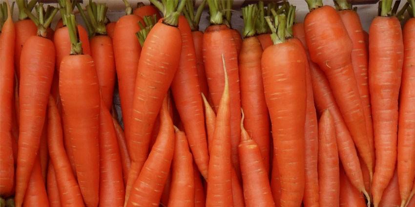 Морковь может сделать кожу оранжевой