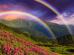 Что означают цвета радуги