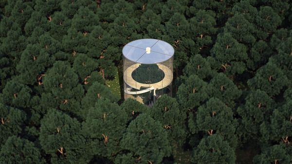 Необычный стеклянный дом посреди леса