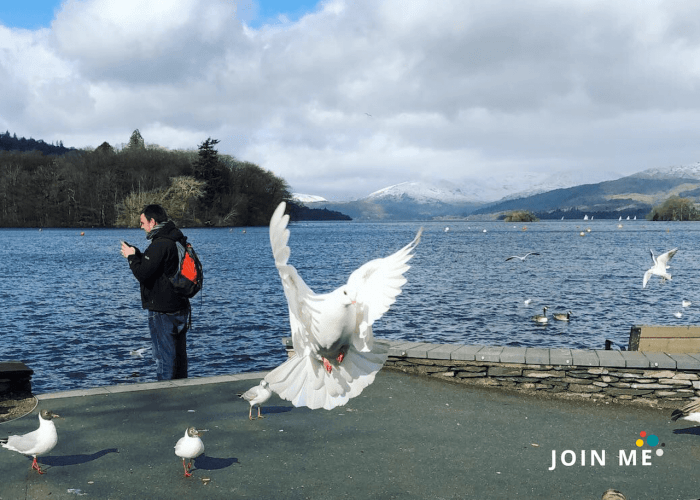 湖區 Lake District:鮑內斯(Bowness on Windermere)