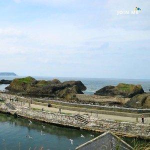 行程:北愛爾蘭 Northern Ireland:巴林托港口(Ballintoy Harbour)
