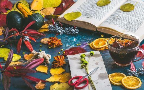 autumn-mood-1229981_960_720