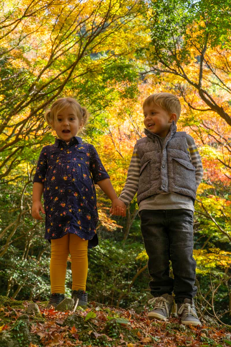 Koyo kids in fall colors