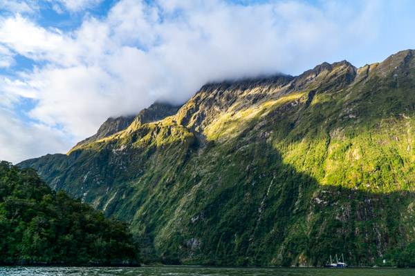 Views of Milford Sound