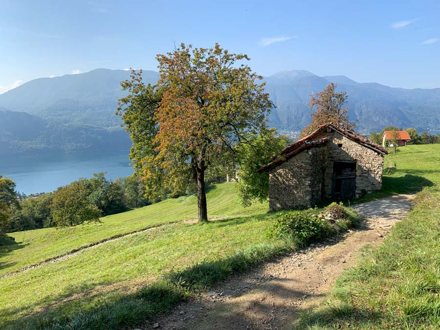 Lake Como views from a hike