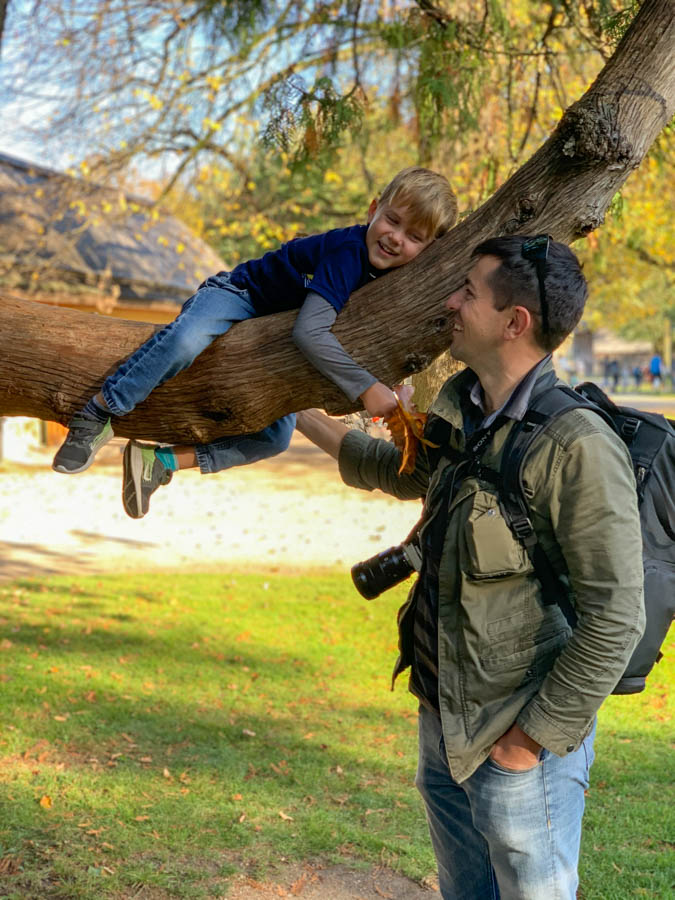 Father and son in a tree in Salzburg
