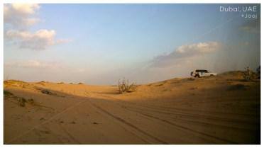 D_desert2b