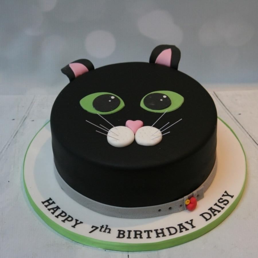 Cat Cake 2d