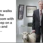 Man Husband Wife Sheep Cow