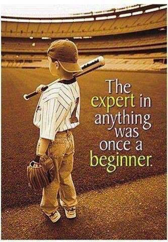 who is an expert