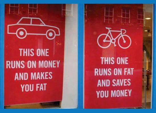 Car and Bicycle Vs Money and Fat
