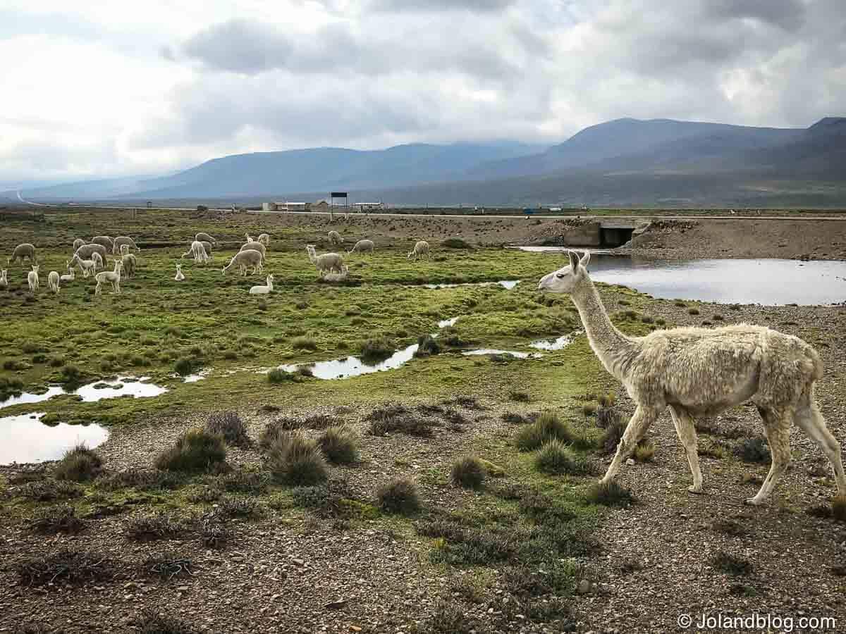 Peru | Guia e Dicas de Viagem