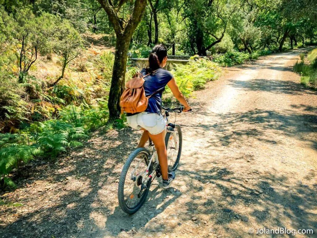 Tapada de Mafra | What to do in Ericeira