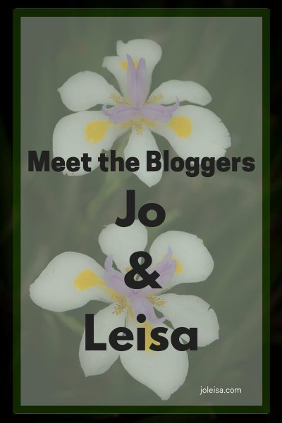 Introducing Jo and Leisa- twin authors from Joleisa.com