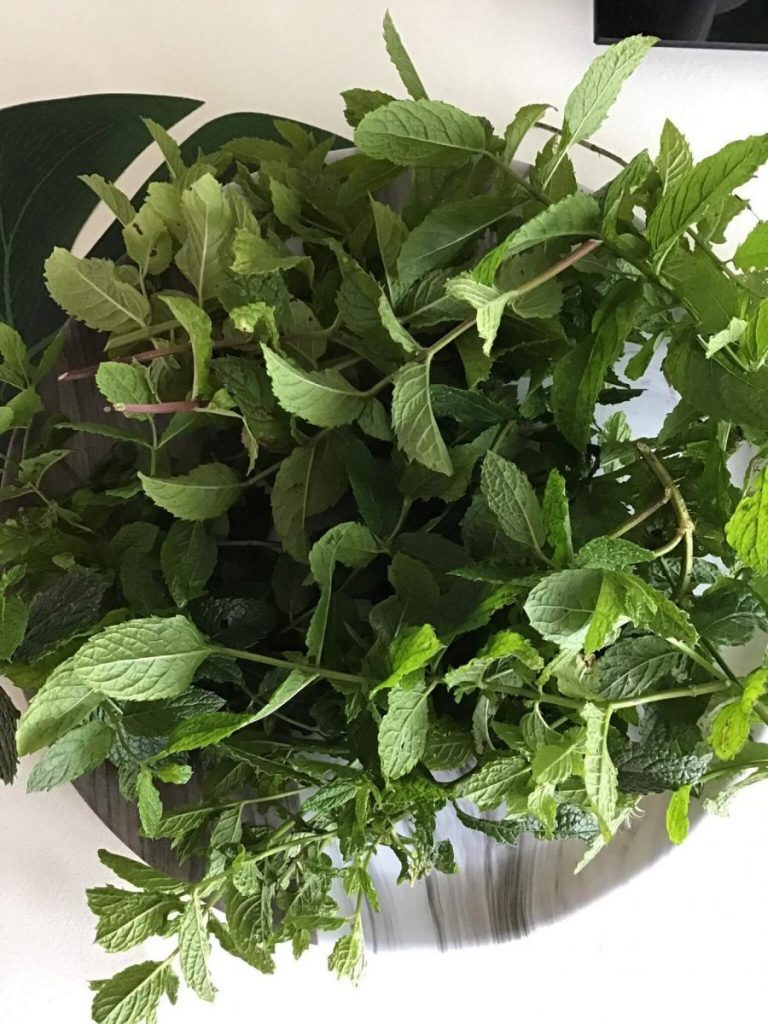 a tray with mint leaves