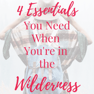 The 4 Essentials You Need When You're in the Wilderness