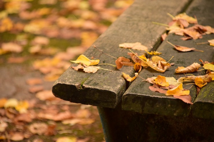 Mystery of Thanks in the Midst of Trials